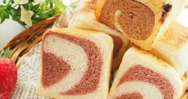 現役パン講師も気になる!自家製天然酵母パン体験会【フルーツ酵母・自家製天然酵母・パン教室|大阪・奈良】